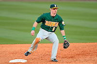 Siena Saints infielder Vincent Citro #6 during a game against the Central Florida Knights at Jay Bergman Field on February 16, 2013 in Orlando, Florida.  Siena defeated UCF 7-4.  (Mike Janes/Four Seam Images)