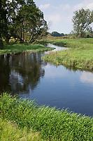Bach, Bachlauf der Schaale, Bachschleife, Flusschleife, Mäander, mäandriert, Ufer, natürlicher Bachlauf, naturnaher Bach, Tieflandbach, Wiesenbach, rivulet, brook
