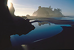 Shi Shi Beach, Olympic National Park, Sea stacks, Point of the Arches, Washington State, Pacific Northwest, Pacific Ocean, USA, Point of Arches was originally purchased for preservation by The Nature Conservancy,.
