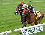 Desert Blanc (4), ridden by Ramon Dominguez, wins the Woodford Reserve Manhattan Handicap on Belmont Stakes Day in Elmont, New York on June 9, 2012.