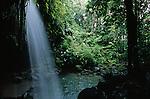 Emerald pool, National park Morne Trois Piton<br /> <br /> <br /> Piscine d emeraude, dans le parc national Morne Trois Pitons  Ile de la Dominique.