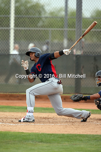 Erik Gonzalez - Cleveland Indians 2016 spring training (Bill Mitchell)