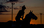 November 8, 2021: Scenes from the Eclipse Sportswire Photo Workshop at Kentucky Downs in Franklin, Kentucky, photo by Lara Poirrier/Eclipse Sportswire Photo Workshop