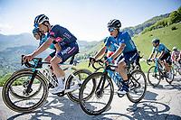 Louis Vervaeke (BEL/Alpecin-Fenix) & Einer Augusto Rubio (COL/Movistar) up the Passo di San Valentino (cat.1)<br /> <br /> 104th Giro d'Italia 2021 (2.UWT)<br /> Stage 17 from Canazei to Sega di Ala (193km)<br /> <br /> ©kramon