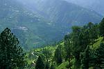 Narkanda, Himachal Pradesh, India, August 2001.