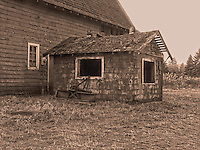 Old milkhouse of the Miller-Brewer barn at the Scatter Creek Wildlife Area in Rochester, Washington, USA.