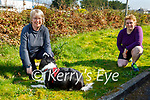 Enjoying a stroll in the Killarney National park on Saturday, l to r: Karen Spence with Misty the dog and Laura Furlong.