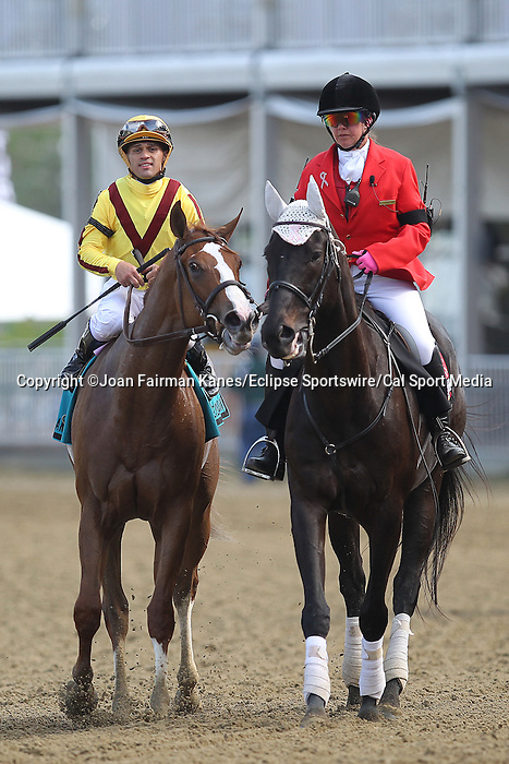 May 15, 2015: Keen Pauline, Javier Castellano up, wins the Grade II Black-Eyed Susan Stakes at Pimlico Race Course in Baltimore, MD. Trainer is Dale Romans; owner is Stonestreet Stables. Joan Fairman Kanes/ESW/CSM