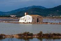 Spanien, Balearen, Ibiza, in den Salinen bei Sant Francesc de s'Estany