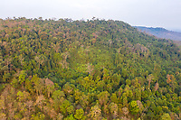 Aerial view of the Phnom Tnout Phnom Pok Wildlife Sanctuary, in Songkom Thmey District, Preah Vihear Province, northern Cambodia.