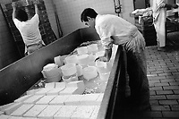 Spain. Basque Country. Mondragón (Basque: Arrasate or Mondragoe), officially known as Arrasate / Mondragón, is a town and municipality in Gipuzkoa Province. Lana Cooperative. Cheese production. Idiazabal is a pressed cheese made from unpasteurized sheep milk, usually from Latxa and Carranzana sheep in the Basque Country. It has a somewhat smokey flavor, but is usually un-smoked. The cheese is handmade and covered in a hard, dark brown, inedible rind. It is aged for a few months and develops a nutty, buttery flavor, eaten fresh, often with quince jam. If aged longer, it becomes firm, dry and sharp and can be used for grating. The Basque Country (Euskadi, País Vasco, Pays Basque), officially the Basque Autonomous Community (Euskal Autonomia Erkidegoa, Comunidad Autónoma Vasca, CAV) is an autonomous community in northern Spain. It includes the Basque provinces of Álava, Biscay, and Gipuzkoa. The Basque Country or Basque Autonomous Community was granted the status of nationality within Spain, attributed by the Spanish Constitution of 1978. The autonomous community is based on the Statute of Autonomy of the Basque Country, a foundational legal document providing the framework for the development of the Basque people on Spanish soil. 26.03.92 © 1992 Didier Ruef
