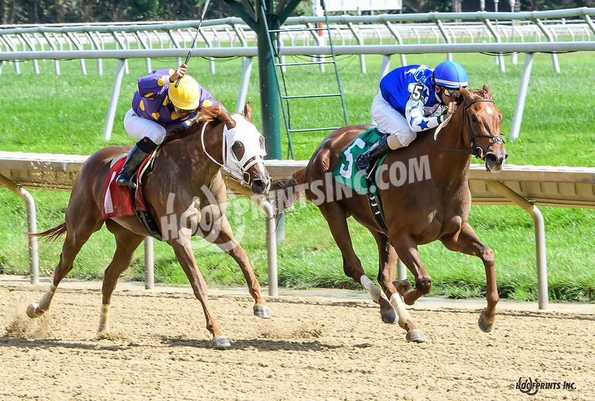 Sugar Shack winning at Delaware Park on 9/26/18