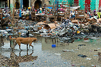 A street dog walks in front of pile of trash in the La Saline market, Port-au-Prince, Haiti, 14 July 2008. Every day thousands of women from all over the city of Port-au-Prince try to resell supplies and food from questionable sources in the La Saline market. The informal sector significantly predominate within the poor Haitian economics and the regular shops virtually do not exist. La Saline is the largest street market area in Port-au-Prince.