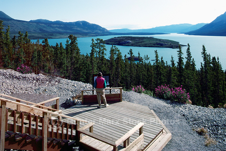 Scenic View of Tagish Lake, YT, Yukon Territory, Canada, along Highway 2 to Skagway, Alaska