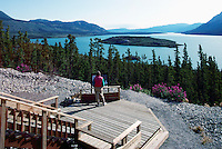 Scenic View of Tagish Lake, YT, Yukon Territory, Canada, along Highway 2 to Skagway, Alaska