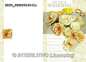 Alfredo, WEDDING, HOCHZEIT, BODA, photos+++++,BRTOPHURF8184,#W#