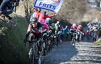 Greg Van Avermaet (BEL/BMC) up the Oude Kwaremont<br /> <br /> 70th Kuurne-Brussel-Kuurne 2018 (1.HC)