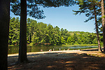 Schreeder Pond, Chatfield Hollow State Park, CT.