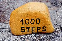 Yellow stone for dive spot 1000 Steps, Netherland Antilles, Bonaire, Caribbean Sea, Atlantic