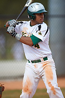 Community College of Rhode Island Knights third baseman Edwin Pacific (4) at bat during a game against the Genesee Community College Cougars on March 20, 2016 at Lake Myrtle Park in Auburndale, Florida.  CCRI defeated Genesee 23-4.  (Mike Janes/Four Seam Images)