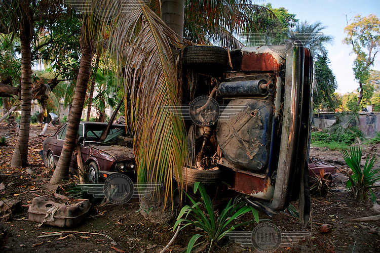 Destroyed cars against a palm tree..Three weeks after tropical storm Jeanne hit Gonaives parts of the city are still flooded. Over 2700 people were reported dead or missing. Haiti is particularly vulnerable to flooding after heavy rainfall due to intense deforestation.