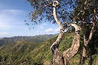 Berge bei Alto de Cotilla, Provinz Guantanamo, Cuba