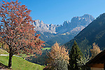 Italy, South Tyrol, Alto Adige, Dolomites, near San Cipriano: autumn scenery with Catinaccio, Torri del Vajolet and Cima di Antermoia mountains | Italien, Suedtirol, Dolomiten, bei St. Zyprian: Herbstlandschaft mit Rosengarten, Vajolettuerme und Keselkogel