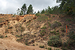 This unstablized hillside is eroding into the creek bottom below it.  Each rain washed more dirt down the hillside.