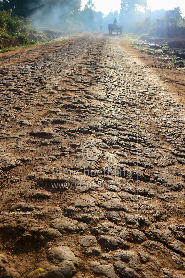 KENYA, County Bungoma, rural transport with ox / KENIA, Transport mit Ochsenkarren