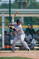 Detroit Tigers Eliezer Alfonzo (53) at bat during a Florida Instructional League game against the Pittsburgh Pirates on October 2, 2018 at the Pirate City in Bradenton, Florida.  (Mike Janes/Four Seam Images)