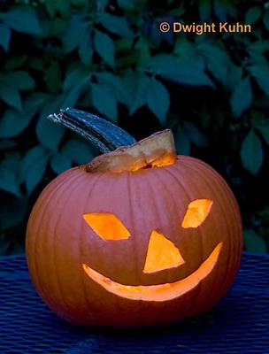 DC08-631z Jack-o-Lantern Pumpkin with candle light, Halloween