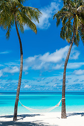 A hammock suspended between palm trees on a secluded beach on the shores of the Indian Ocean.