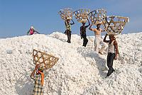 INDIA Madhya Pradesh , biodynamic organic cotton project bioRe in Kasrawad , storage for harvested cotton at ginning factory / INDIEN Madhya Pradesh , Lagerplatz und Entkernungsfabrik der bioRe India , Projekt fuer biodynamischen Anbau von Biobaumwolle in Kasrawad
