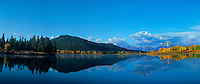 937050025 panoramic view of a tranquil early fall morning with yellow colored aspens populus tremuloides at oxbow bend of the snake river in grand tetons national park wyoming