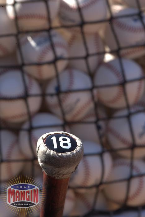 Bat during batting practice. Baseball: Tampa Bay Devil Rays vs Oakland Athletics. Oakland, CA 5/30/2005 MANDATORY CREDIT: Brad Mangin