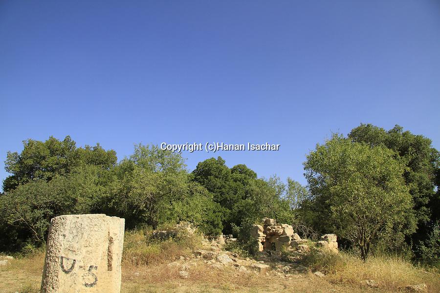 Israel, Hurvat Seadim in Jerusalem mountains