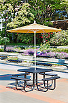 Metal picnic table with umbrella on brick patio in front of landscaped building.