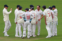 Graham Wagg (4th R) of Glamorgan is congratulated by his team mates after taking the wicket of Jesse Ryder during Glamorgan CCC vs Essex CCC, Specsavers County Championship Division 2 Cricket at the SSE SWALEC Stadium on 23rd May 2016