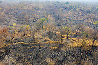 Aerial view of burnt land in the Phnom Tnout Phnom Pok Wildlife Sanctuary, in Songkom Thmey District, Preah Vihear Province, northern Cambodia. Fires are set by farmers, loggers and local people looking to either capture wildlife or clear land for agriculture. Cambodia has one of the world's fastest rates of deforestation and it is estimated only 3% of primary forest is now left.