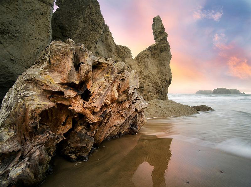Root ball driftwood at Bandon Beach, Oregon