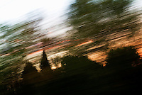 Blurred view of clouds behind trees at sunset.