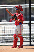 April 1, 2010:  Catcher Sebastian Valle (7) of the Philadelphia Phillies organization during Spring Training at the Carpenter Complex in Clearwater, FL.  Photo By Mike Janes/Four Seam Images