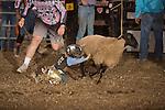 SEBRA - Woodstock, VA - 9.2.2016 - Mutton Busting
