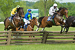5 May 2012: 5 May 2012: Incomplete and Joey Elliot win the Virginia Gold Cup at Great Meadow in The Plains, Va. Bubble Economy and Willie Dowling (white cap) came in fourth. Incomplete is owned by Robert Kinsley and trained  by Ann Stewart.  (Susan M. Carter/Eclipse Sportswire)