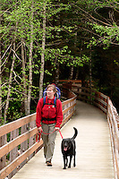 Woman hiking with black dog and with baby in backpack on back, Big Four Ice Caves Trail, Snohomish County, Mount Baker-Snoqualmie National Forest, Cascade Mountains, Washington, US