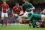 Wales v Ireland 0213