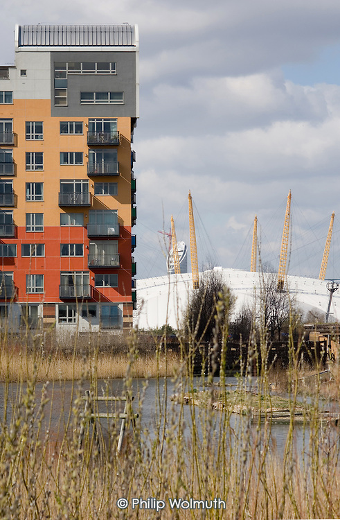 A pond in the Ecology Park at Greenwich Millenium Village, and the Millenium Dome, London.