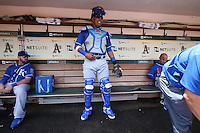 OAKLAND, CA - JUNE 27:  Salvador Perez #13 of the Kansas City Royals gets ready in the dugout before the game against the Oakland Athletics at O.co Coliseum on Saturday, June 27, 2015 in Oakland, California. Photo by Brad Mangin