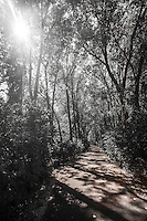 Treading Off the Beaten Path