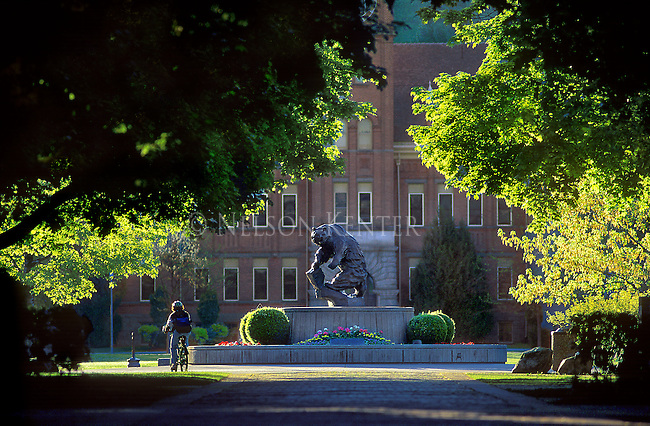 A student rides past the grizzly statue on the University of Montana campus in Missoula, Montana